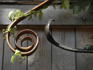 Simple Garden Trellis